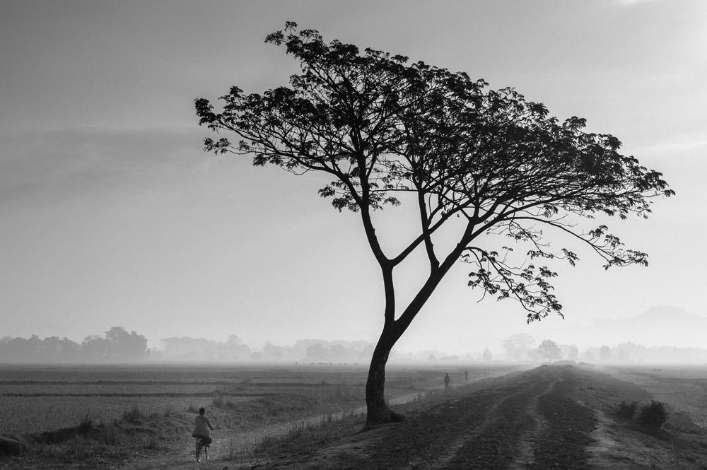 Countryside Mrauk U Myanmar