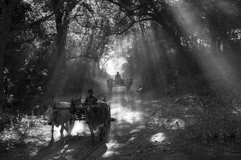Village Life Bagan