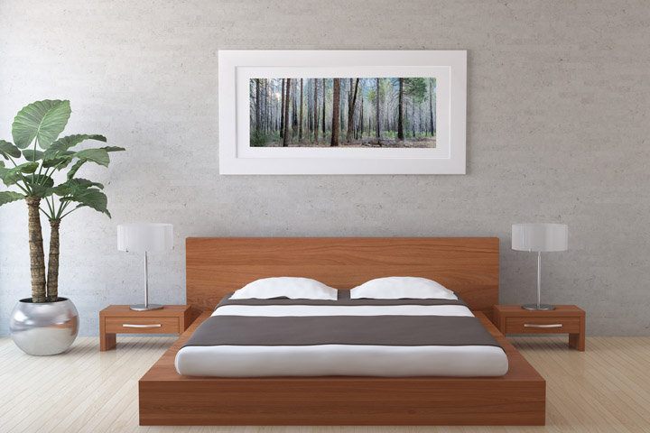 Art for the home picture of forest scene in bedroom