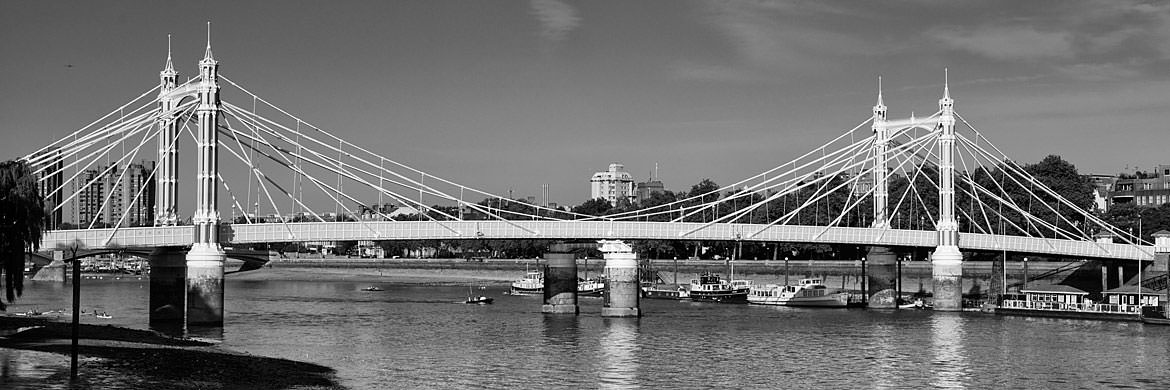 Photograph of Albert Bridge 16