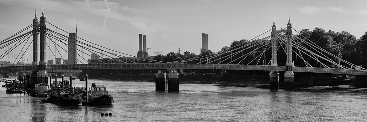 Photograph of Albert Bridge 17