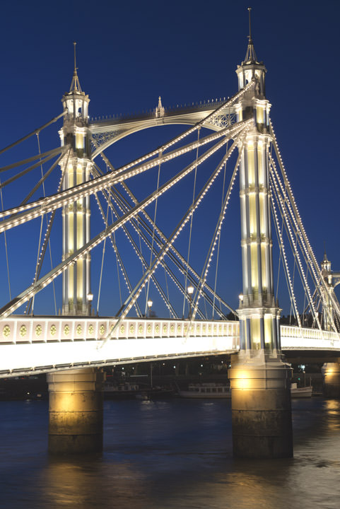 Photograph of Albert Bridge 20