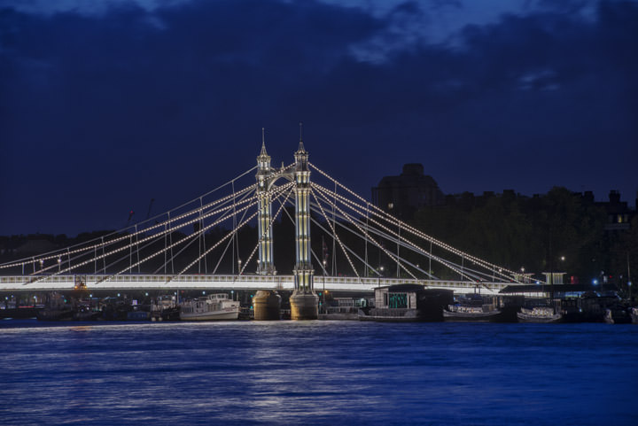 Photograph of Albert Bridge 29