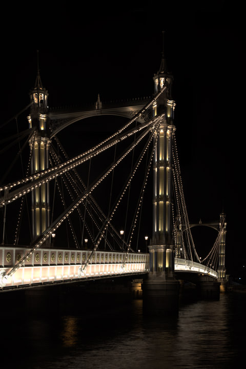Albert Bridge 34