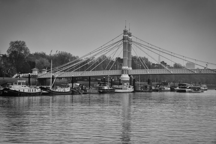 Photograph of Albert Bridge 44