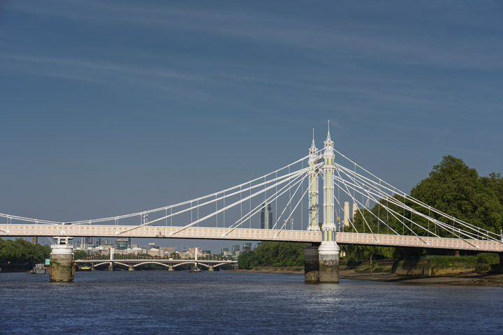 Photograph of Albert Bridge 46