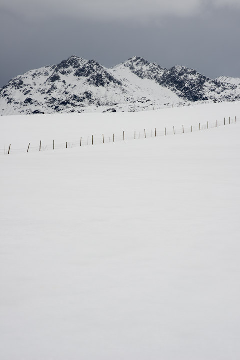 Photograph of Arctic Snow Scene 3