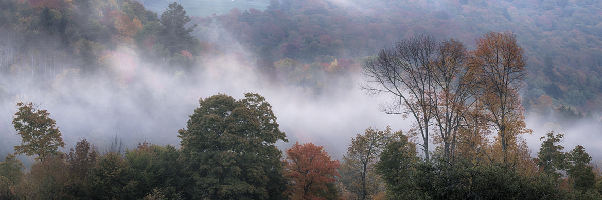 Photograph of Autumn Mist 2