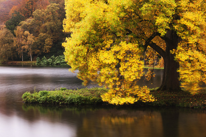 Autumn Stourhead - England