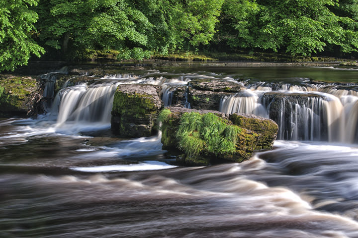 Photograph of Aysgarth Falls 2