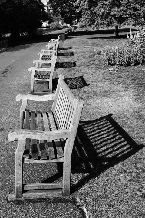 Benches in St James Park