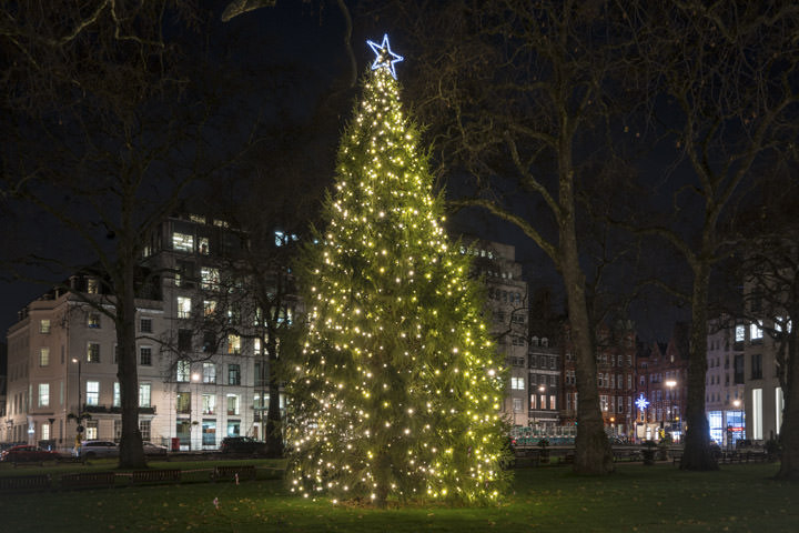 Berkeley Square Christmas