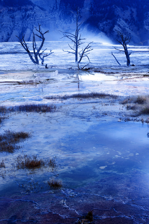 Blue Dawn - Yellowstone Wyoming