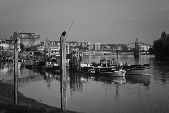 Boats at Hammersmith Bridge 1