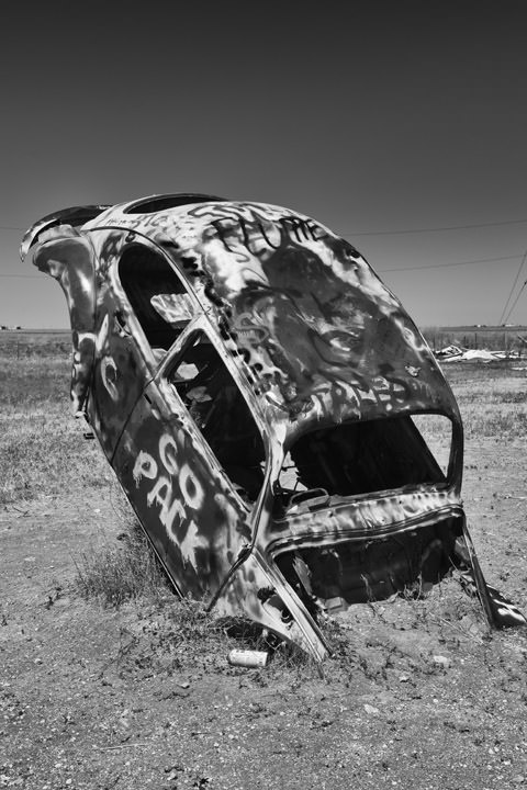 Photograph of Buried Beetle - Route 66