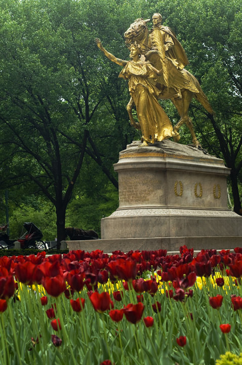 Photograph of Central Park 12