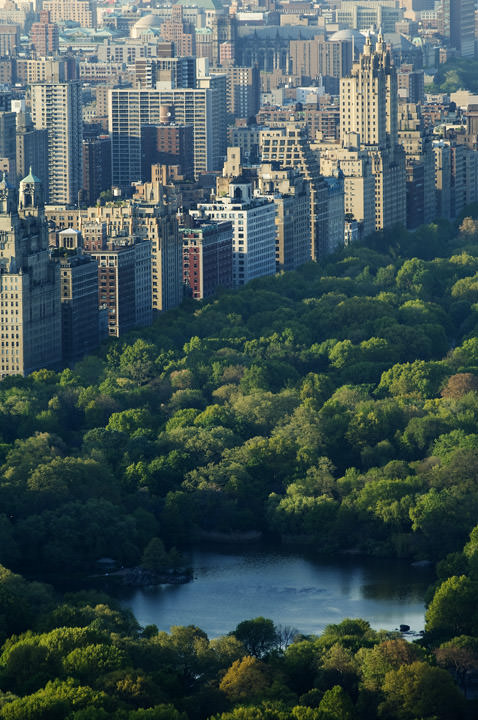 Photograph of Central Park