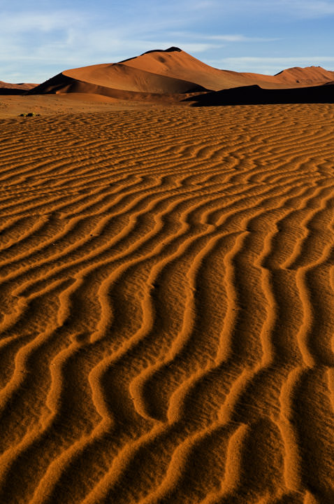 Photograph of Desert Stripes