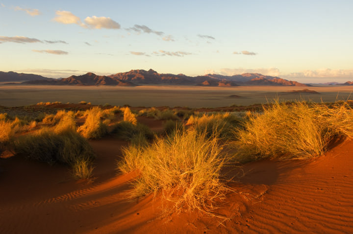 Photograph of Desert panorama - 1