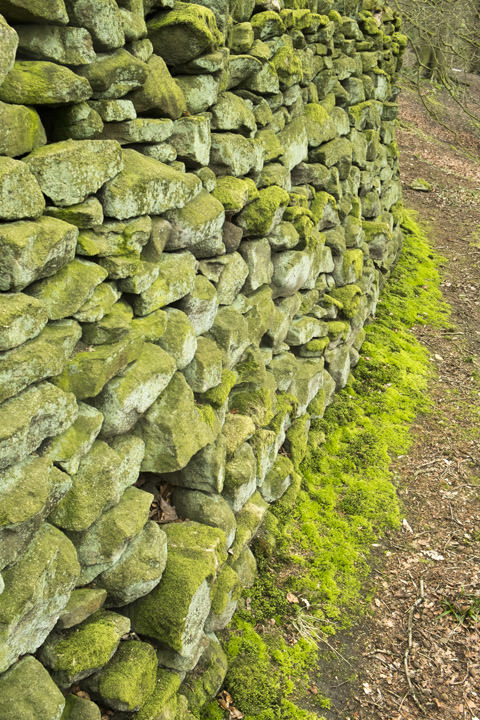 Photograph of Drystone Wall 7