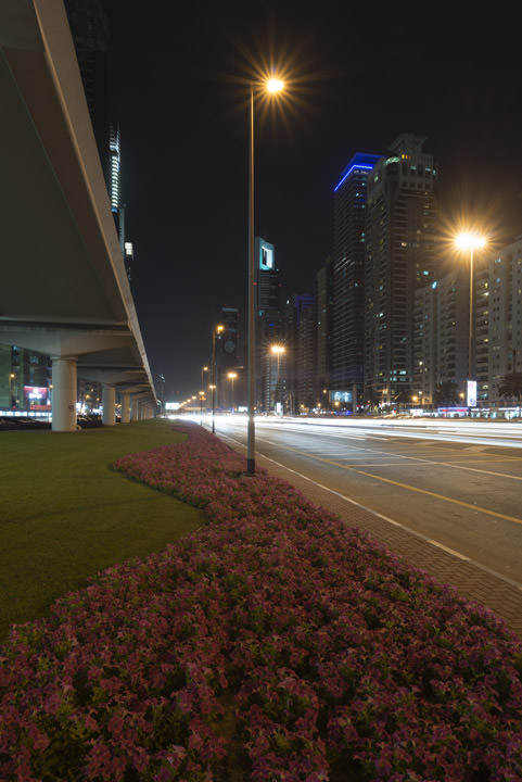 Photograph of Dubai Street Scene 2