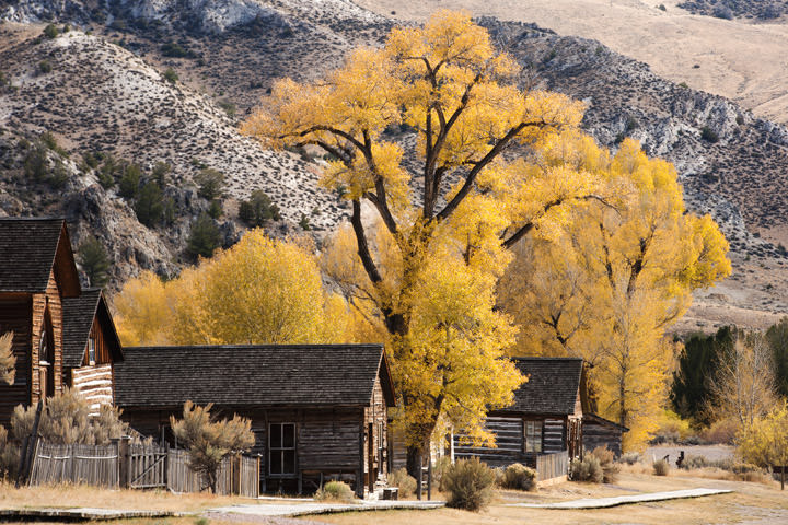 Photograph of Fall at Bannack