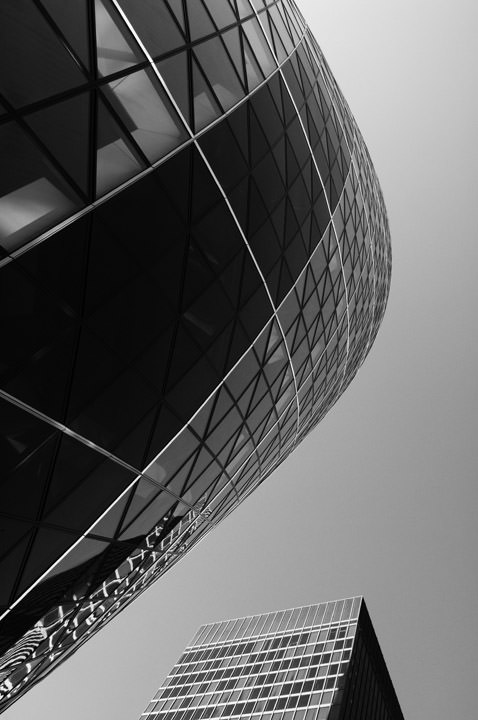 Photograph of Gherkin 1