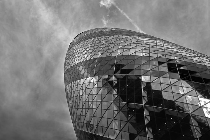 Photograph of Gherkin 12