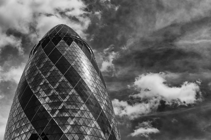 Photograph of Gherkin 6