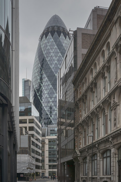 Photograph of Gherkin 9