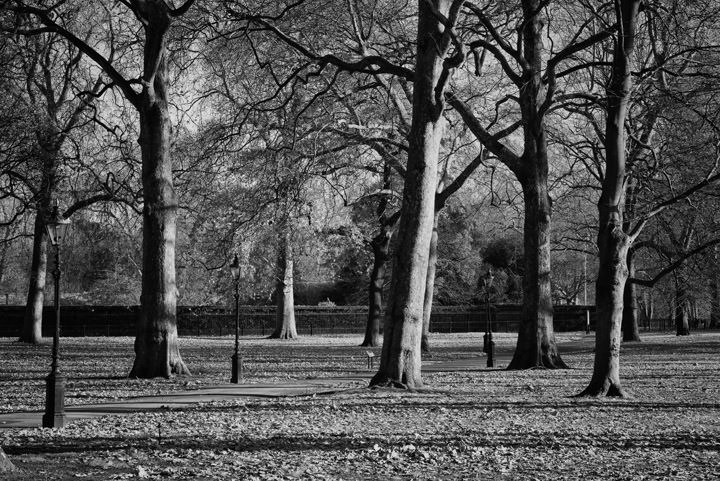 Photograph of Green Park 7