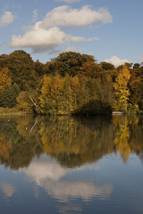 Hampstead Heath in Autumn