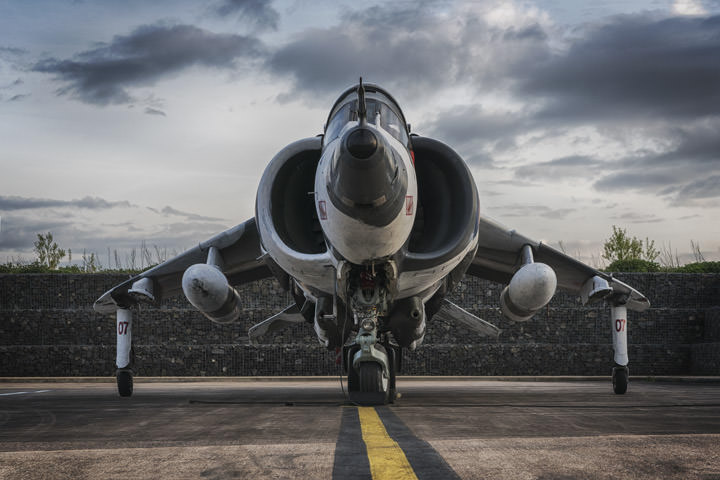 Photograph of Harrier 1
