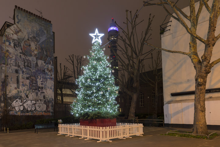 London Christmas Tree 1