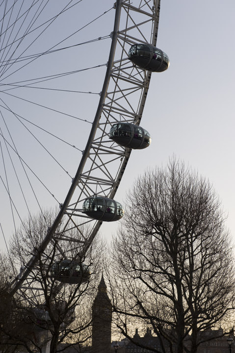 Photograph of London Eye 7