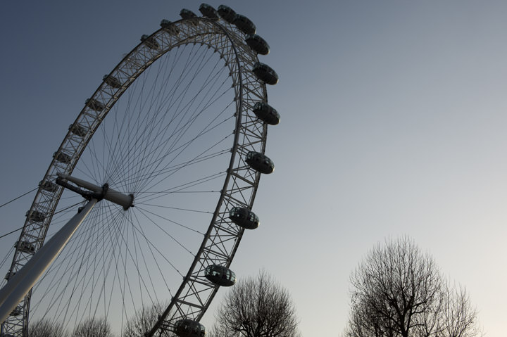 London Eye and bare trees in winter