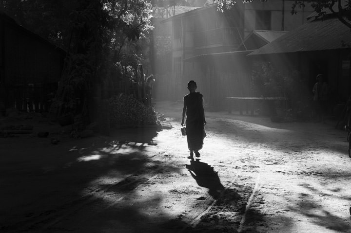 Photograph of Morning Monk