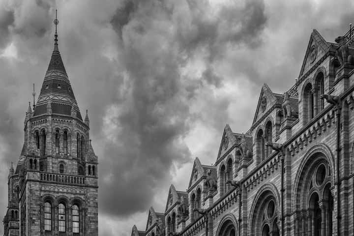 Photograph of Natural History Museum 5