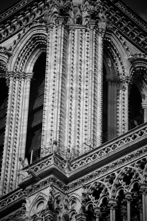 Photograph of Notre Dame Detail 3