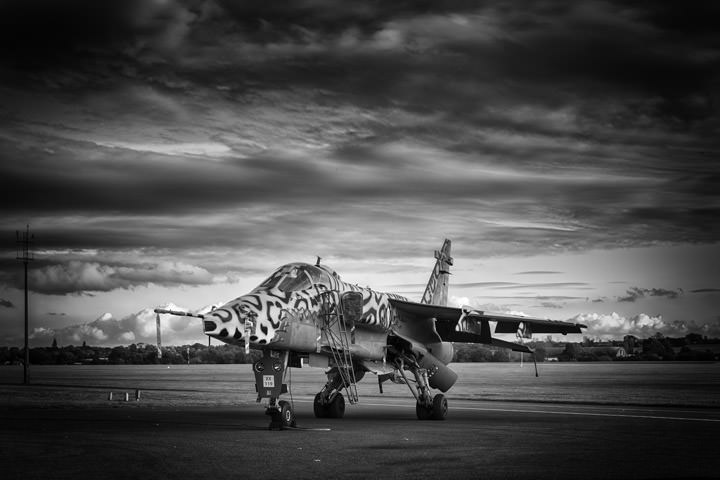 Photograph of RAF Jaguar 1
