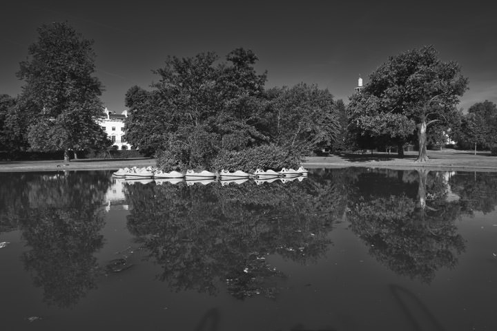 Photograph of Regents Park 11
