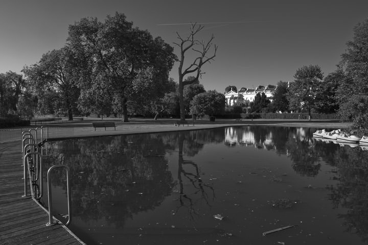 Photograph of Regents Park 12
