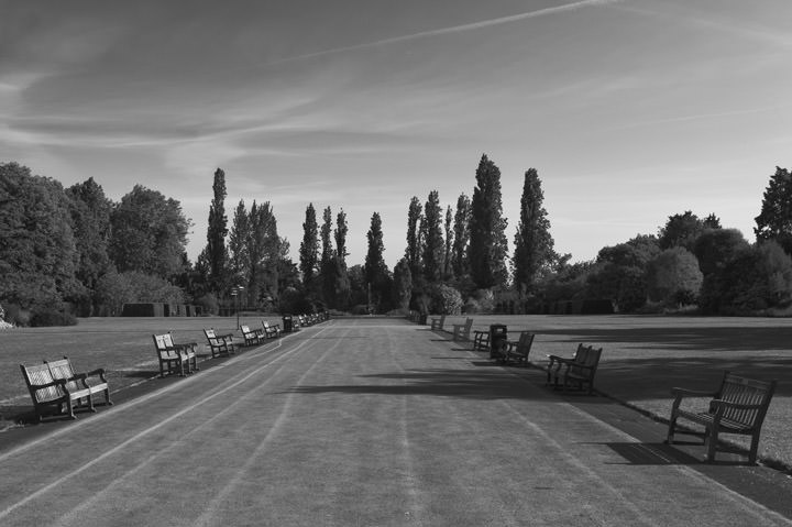 Photograph of Regents Park 2