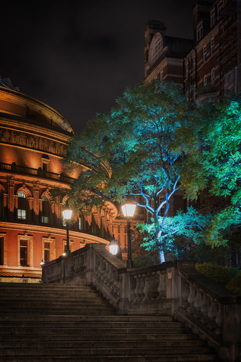 Royal Albert Hall 14