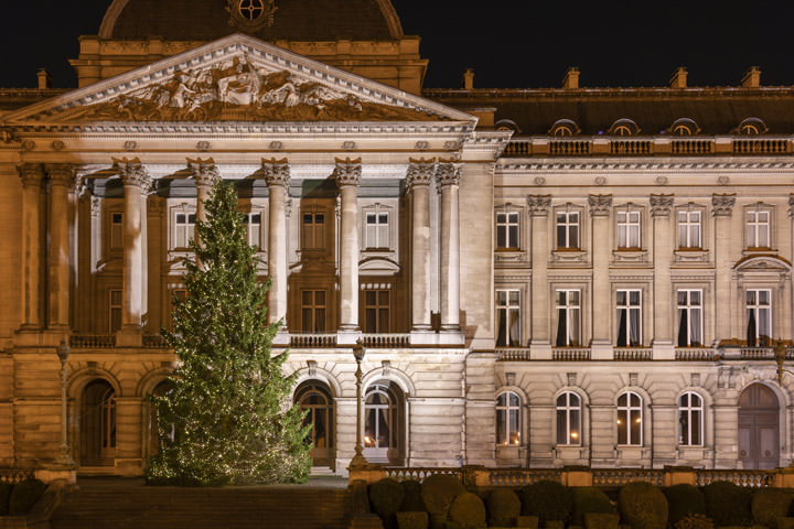 Photograph of Royal Palace Christmas