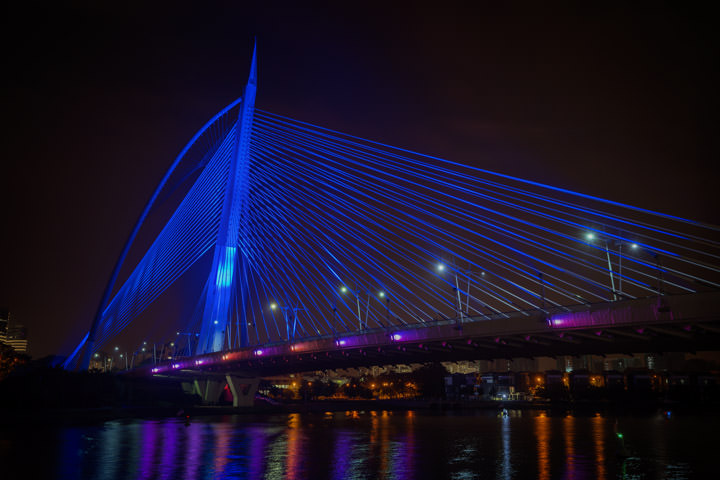 Seri Wawasan Bridge 1