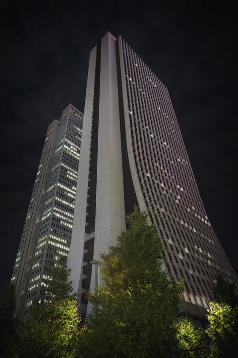 Photograph of Shinjuku Skyscrapers 2