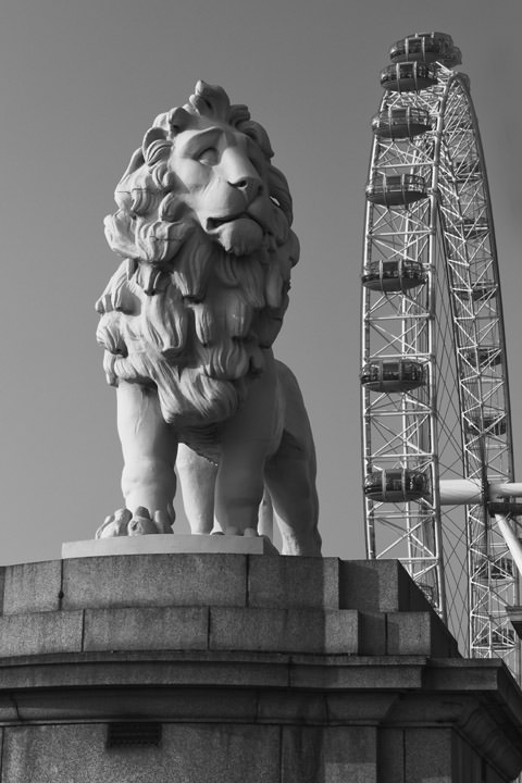 Photograph of South Bank Lion