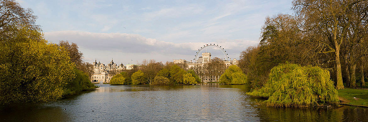 Photograph of St James Park 2