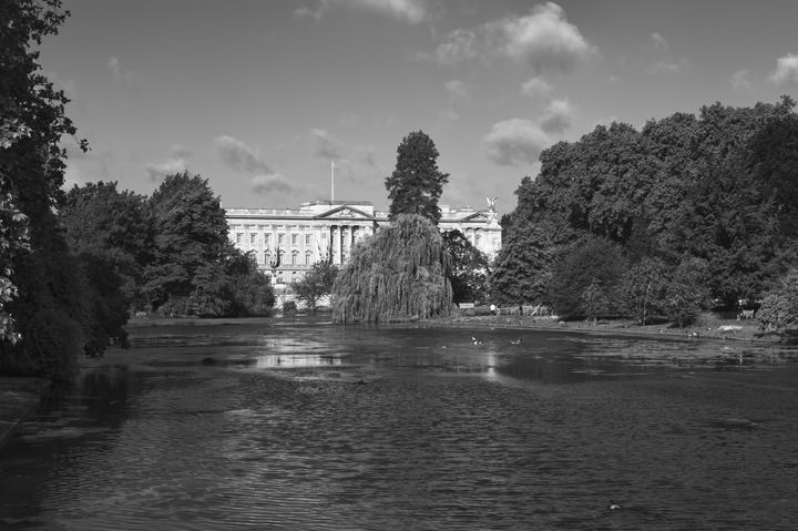 Photograph of St James Park 5